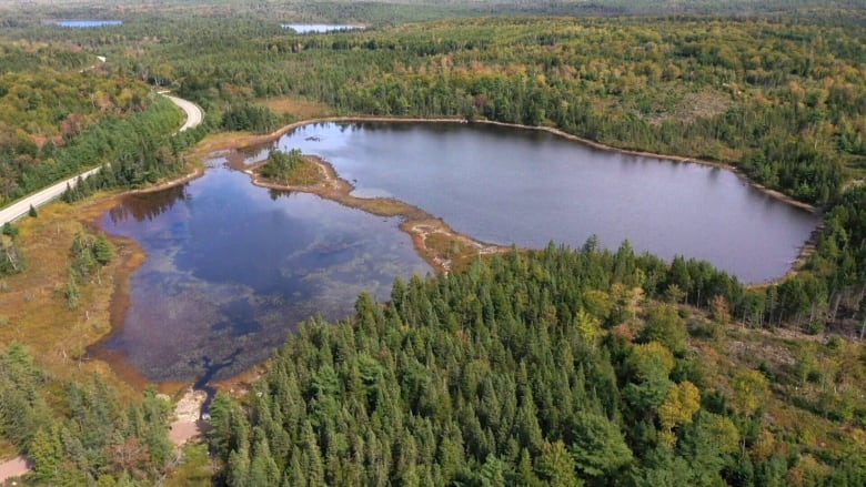 Why Nova Scotia wants to poison a lake to kill off invasive species