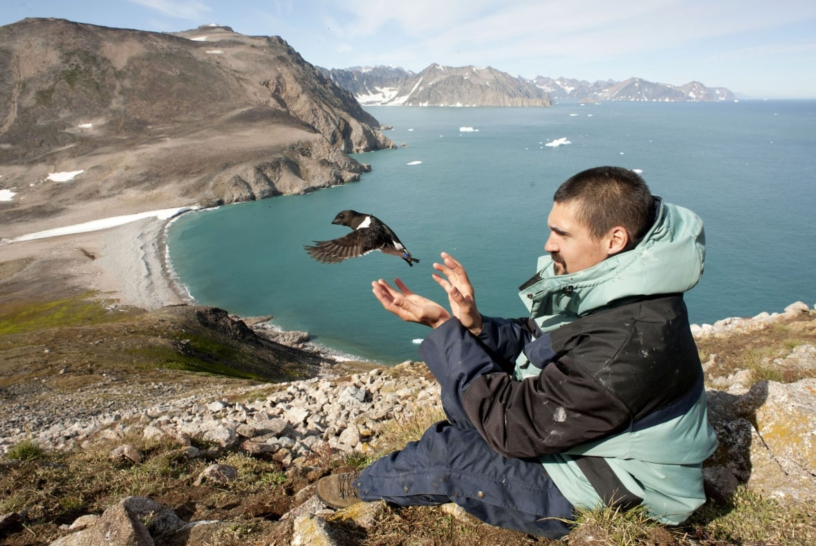 Tracking the effects of climate change on Arctic animals is no easy task Social Sharing