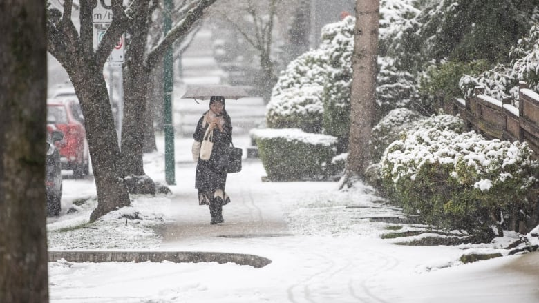 Snowfall warning for Metro Vancouver, with up to 10 cm expected in some areas