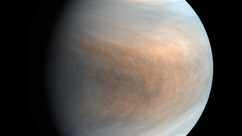 Life on Venus? Recent finding hinting at life in the clouds questioned