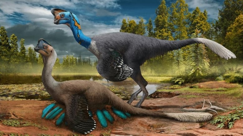 Scientists find rare fossil of dinosaur sitting on eggs with embryos inside