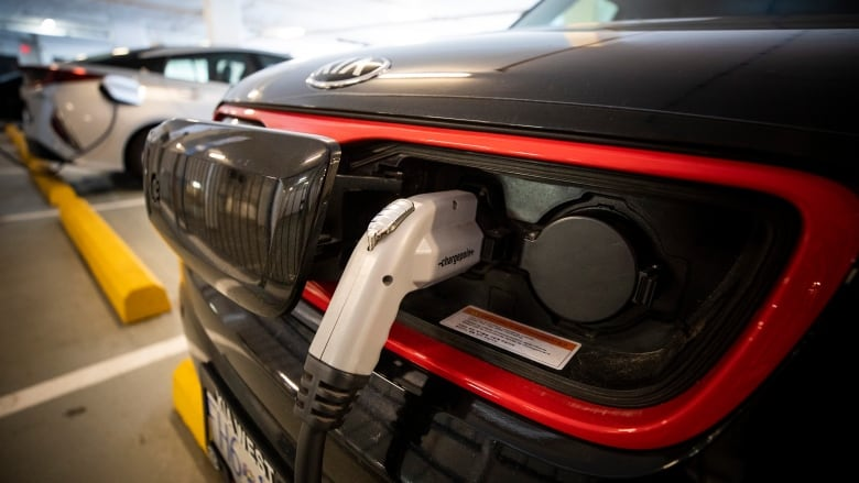 Electric vehicles selling in record numbers in B.C., province says