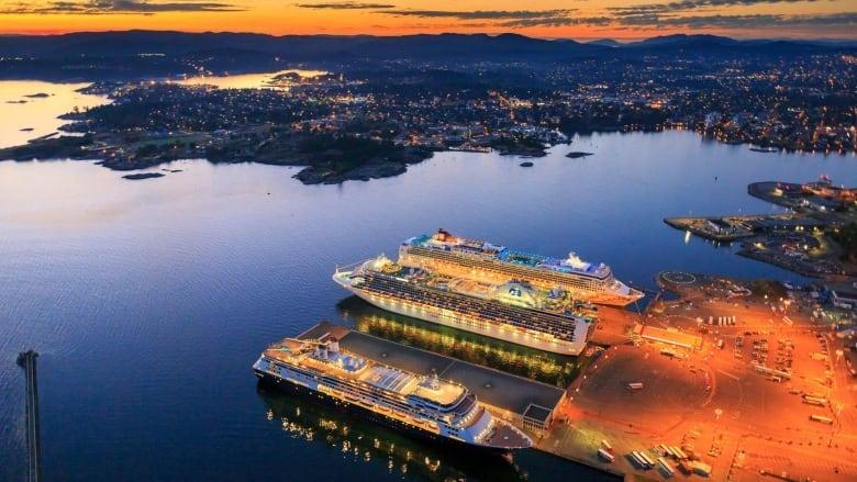 U.S. law allowing cruise ships to skip B.C. ports would set risky precedent: harbour authority