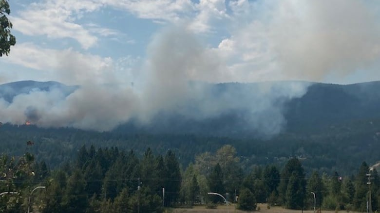 New evacuation orders issued as dozens of wildfires burn across B.C.