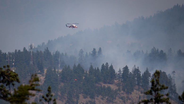 Showers, lightning in forecast for some B.C. wildfires, with smoke expected to reach coast