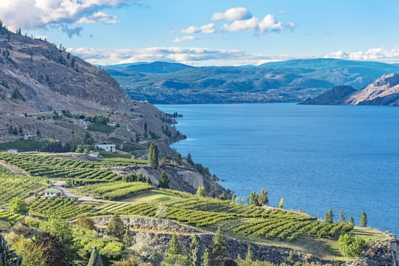 The wine-growing Okanagan Valley in B.C. has a cryptic allure